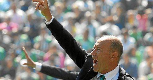 Calderón, técnico del Betis, durante un partido.