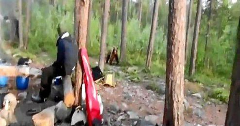 (Vídeo) Cantan para ahuyentar a un oso