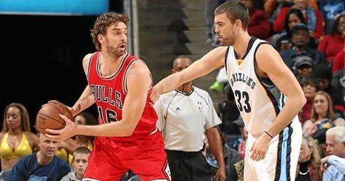 Marc y Pau Gasol, jugadores de la NBA.