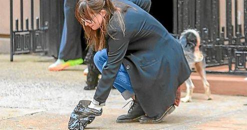Ciudadanos propone una iniciativa para acabar con las heces de perro en las calles de Sevilla.