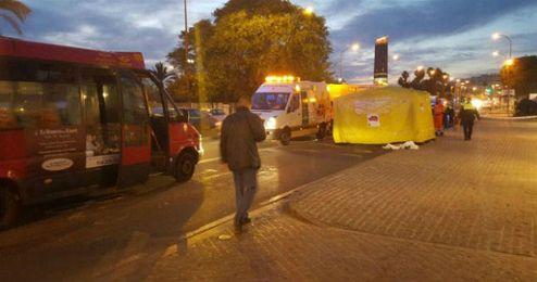 El accidente se ha producido en la zona próxima a la Real Maestranza.