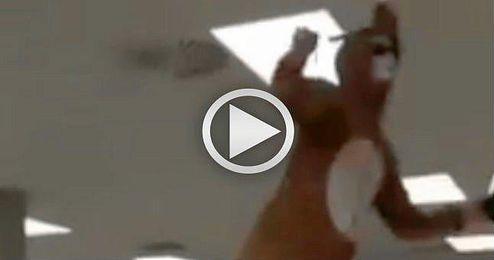 (VIDEO) Un espontáneo disfrazado irrumpe en una biblioteca de Sevilla