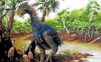 Dibujo aproximado de Gastornis, nombre con el que ha sido bautizada la especie.