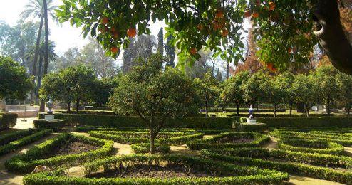 Parque Maria Luisa.