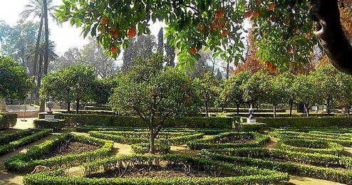 Imagen del sevillano Parque de María Luisa.
