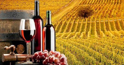 Las exportaciones de vino español batieron su récord en 2015