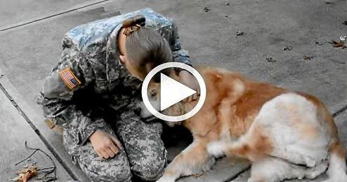 (VIDEO) El reencuentro de un perro con su due�a militar