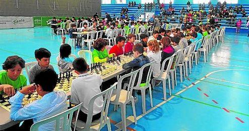 Participan ni�os de Sierra Norte, Aljarafe, Campi�a, Sierra Sur y Sevilla.