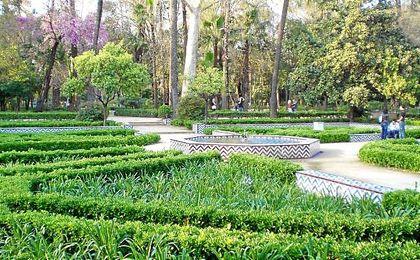 Parque María Luisa.