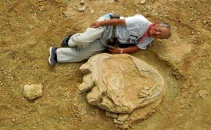 La huella data del período cretáceo hace alrededor de 70 millones a 90 millones de años.