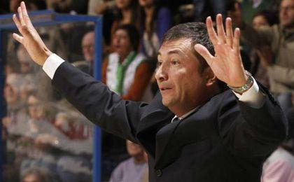 Luca Banchi se perfila como sustituto de Tabak.