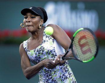 Federer-Coric y Venus Williams-Daria Kasatkina, duelos en semifinales