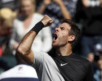 Juan Martín del Potro apabulla a Raonic y se cita con Federer en la final