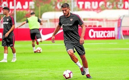 Daniel Carriço está rindiendo a un excelente nivel en este inicio de temporada.