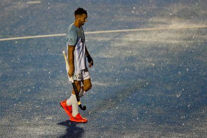Leones argentinos y Alemania deben cancelar su encuentro por las lluvias