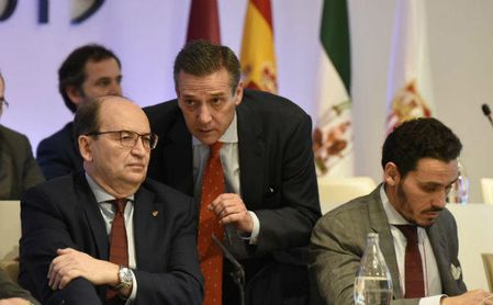 """Cruz, sobre la guerra Castro-Del Nido: """"Al final habrá un entendimiento por el bien del Sevilla"""""""
