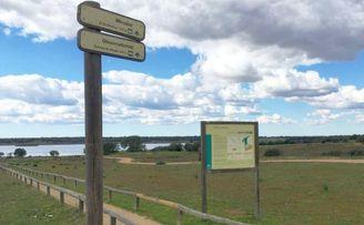Dehesa de abajo-Entremuros: una ruta de vado a vado por Doñana.
