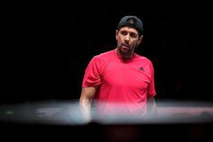 Fernando Verdasco, nuevo director de las finales de la Copa Davis