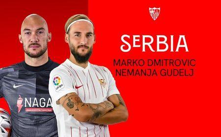 Dmitrovic y Gudelj, convocados con Serbia